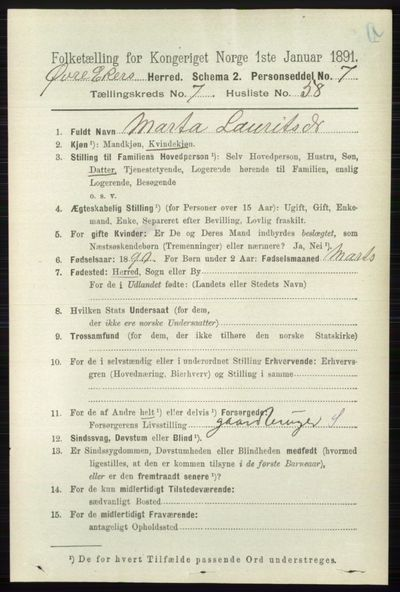 Image from object titled Folketelling 1891 - Øvre Eiker - personsedler - side 2918