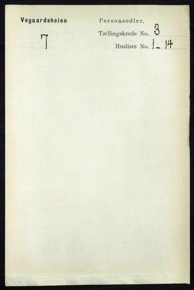 Image from object titled Folketelling 1891 - Vegårshei - personsedler - side 618