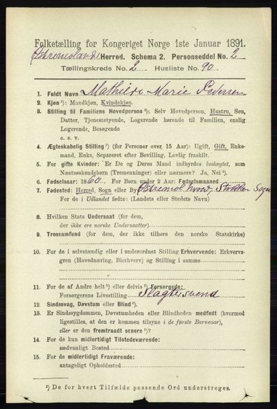Image from object titled Folketelling 1891 - Austre Moland - personsedler - side 1213