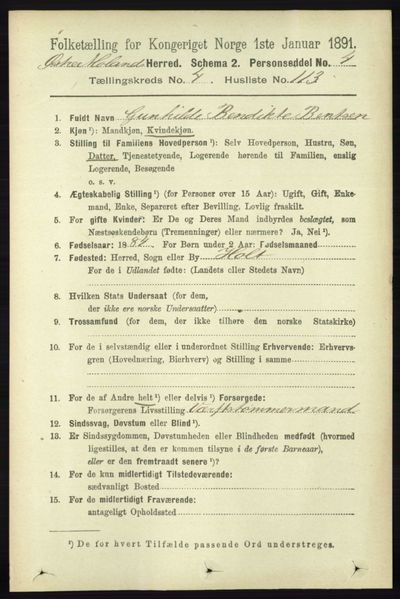 Image from object titled Folketelling 1891 - Austre Moland - personsedler - side 2662