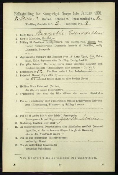 Image from object titled Folketelling 1891 - Vestre Moland - personsedler - side 639