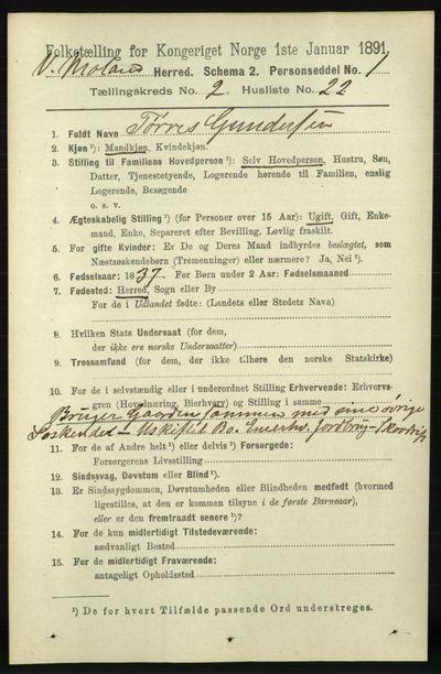 Image from object titled Folketelling 1891 - Vestre Moland - personsedler - side 730