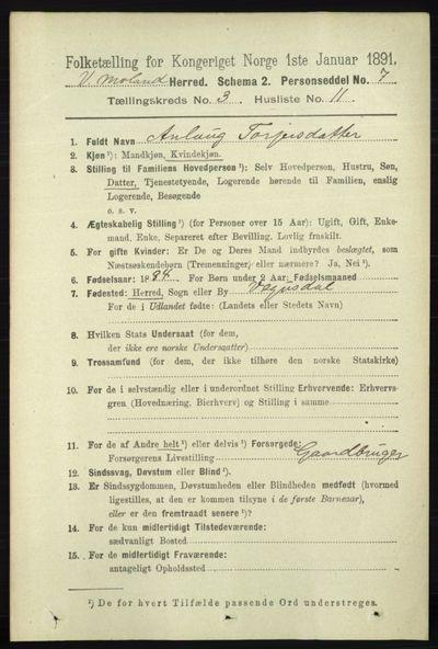 Image from object titled Folketelling 1891 - Vestre Moland - personsedler - side 1015