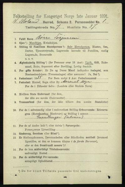 Image from object titled Folketelling 1891 - Vestre Moland - personsedler - side 2965