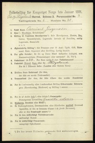 Image from object titled Folketelling 1891 - Øvrebø og Hægeland - personsedler - side 1283