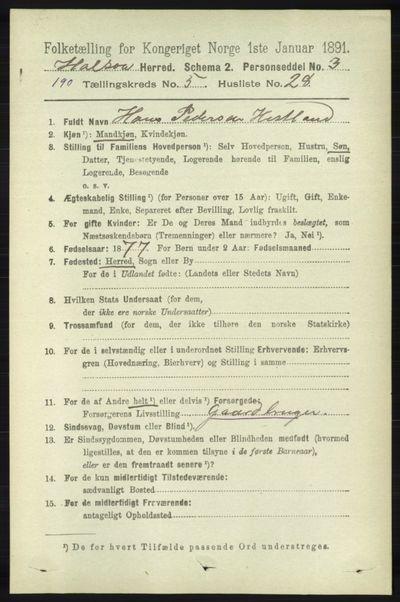 Image from object titled Folketelling 1891 - Halse og Harkmark - personsedler - side 2167