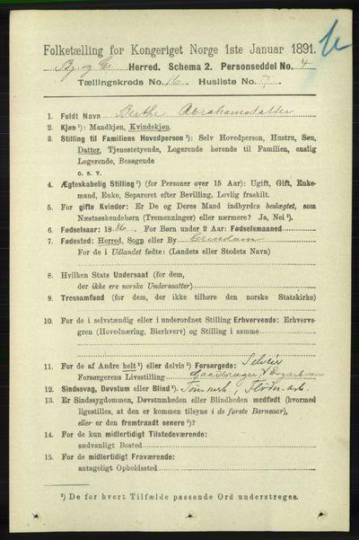 Image from object titled Folketelling 1891 - Bjelland og Grindheim - personsedler - side 806