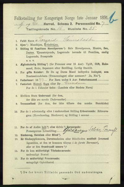 Image from object titled Folketelling 1891 - Bjelland og Grindheim - personsedler - side 901