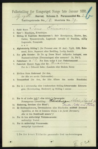 Image from object titled Folketelling 1891 - Bjelland og Grindheim - personsedler - side 987