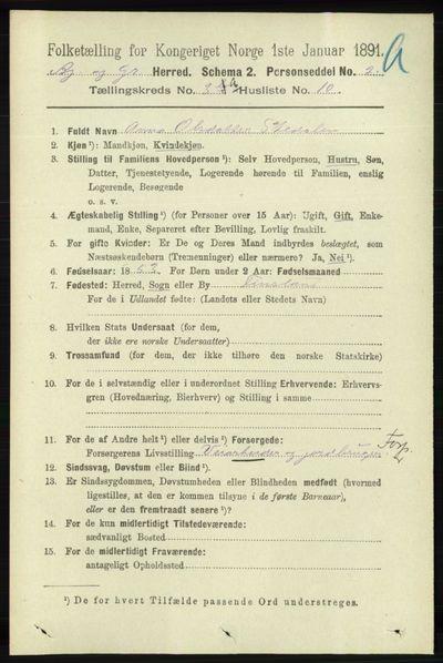 Image from object titled Folketelling 1891 - Bjelland og Grindheim - personsedler - side 1509