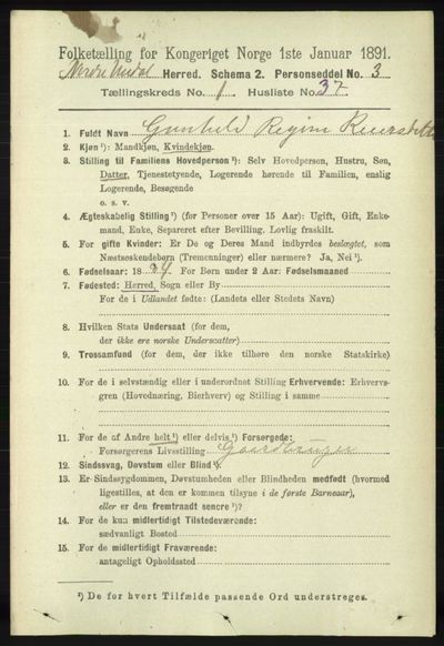 Image from object titled Folketelling 1891 - Nord-Audnedal - personsedler - side 231