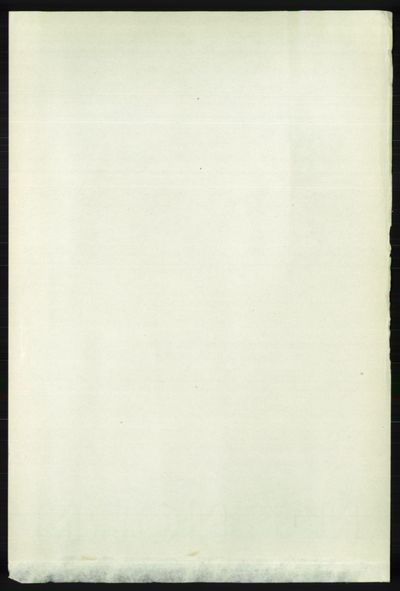 Image from object titled Folketelling 1891 - Nord-Audnedal - personsedler - side 1170