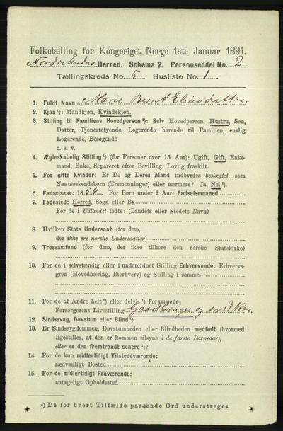 Image from object titled Folketelling 1891 - Nord-Audnedal - personsedler - side 1229