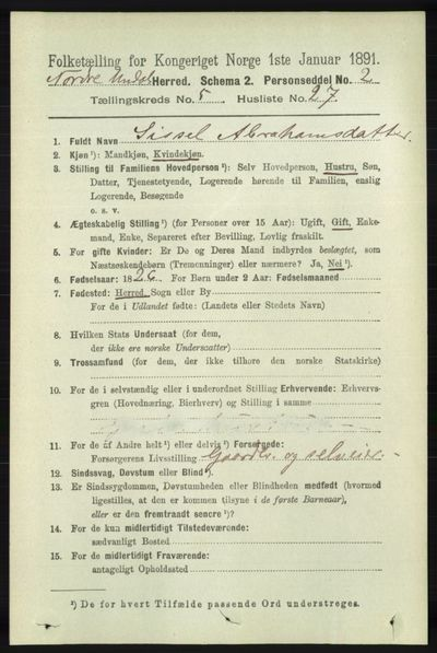 Image from object titled Folketelling 1891 - Nord-Audnedal - personsedler - side 1335