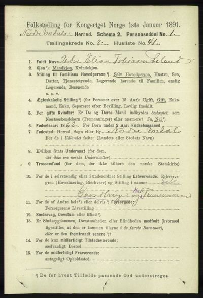 Image from object titled Folketelling 1891 - Nord-Audnedal - personsedler - side 2286
