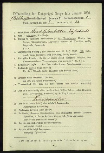 Image from object titled Folketelling 1891 - Øyslebø og Laudal - personsedler - side 1108