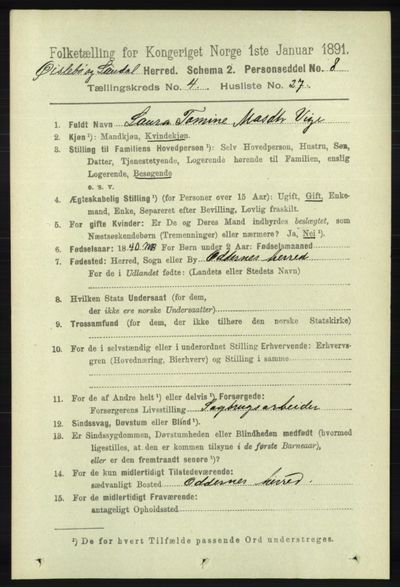Image from object titled Folketelling 1891 - Øyslebø og Laudal - personsedler - side 1139