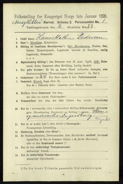 Image from object titled Folketelling 1891 - Hidra og Nes - personsedler - side 692