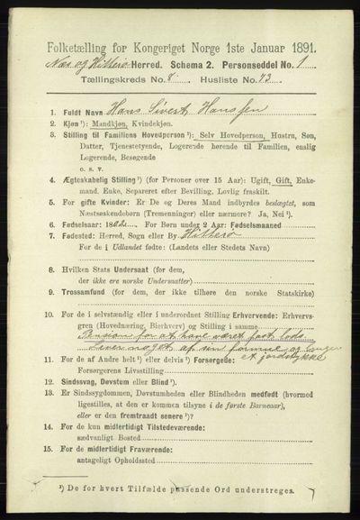 Image from object titled Folketelling 1891 - Hidra og Nes - personsedler - side 3697