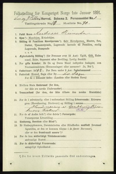 Image from object titled Folketelling 1891 - Hidra og Nes - personsedler - side 4349