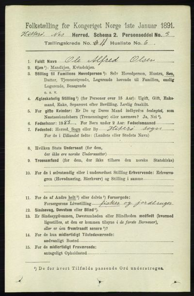 Image from object titled Folketelling 1891 - Hidra og Nes - personsedler - side 4489