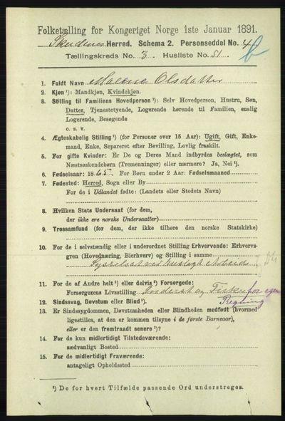 Image from object titled Folketelling 1891 - Skudenes - personsedler - side 4264
