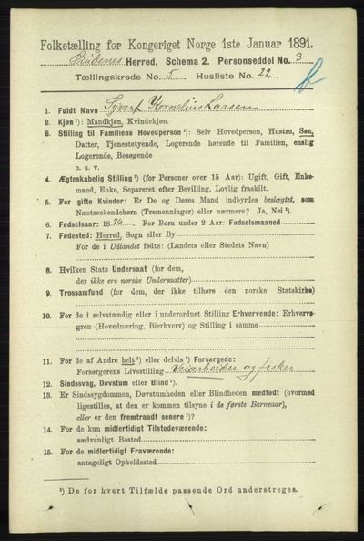 Image from object titled Folketelling 1891 - Skudenes - personsedler - side 5336