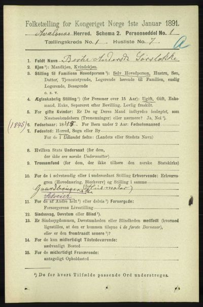 Image from object titled Folketelling 1891 - Avaldsnes - personsedler - side 196