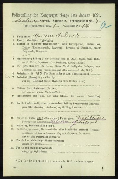 Image from object titled Folketelling 1891 - Avaldsnes - personsedler - side 262