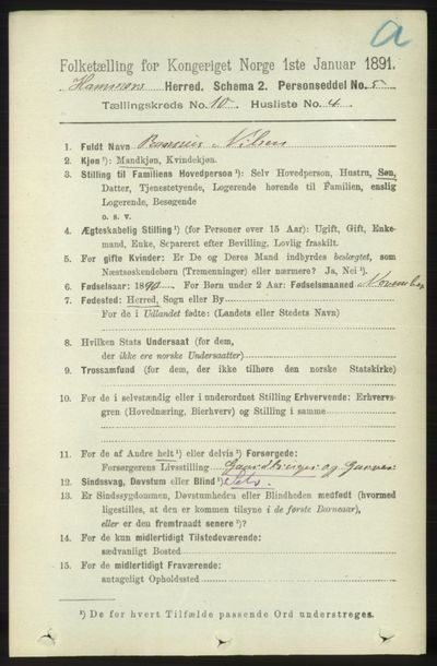 Image from object titled Folketelling 1891 - Hamre - personsedler - side 2800
