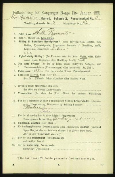 Image from object titled Folketelling 1891 - Nedre Stjørdal - personsedler - side 1303