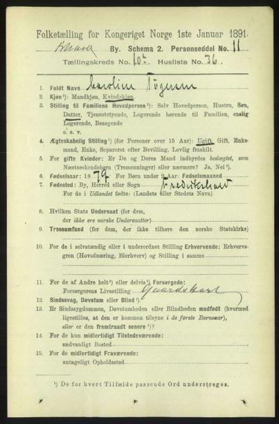 Image from object titled Folketelling 1891 - Fredrikshald - personsedler - side 7335