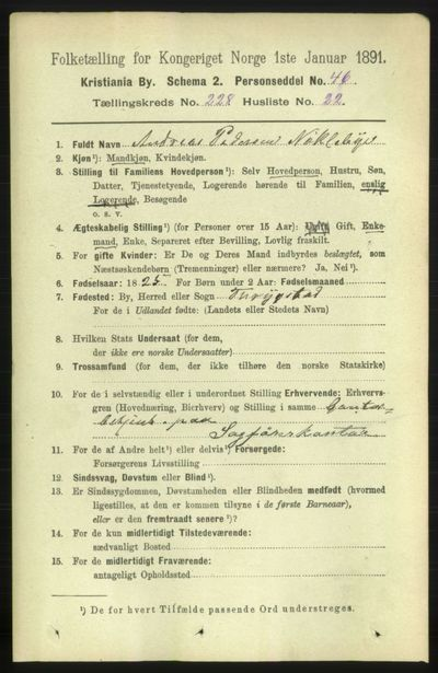 Image from object titled Folketelling 1891 - Kristiania - personsedler - side 140252
