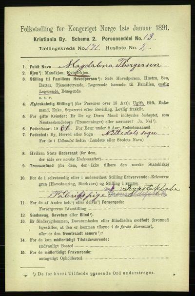 Image from object titled Folketelling 1891 - Kristiania - personsedler - side 100676