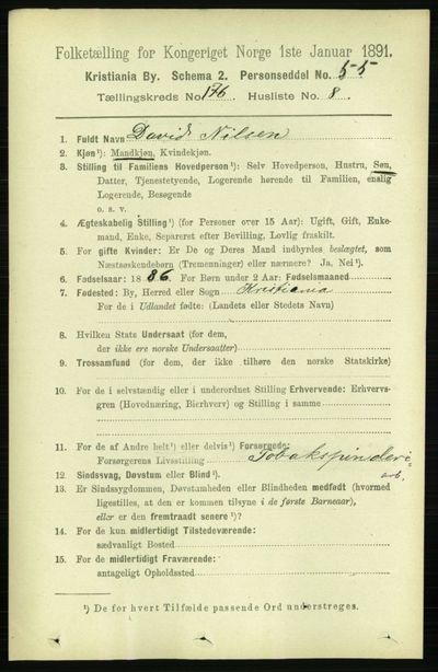 Image from object titled Folketelling 1891 - Kristiania - personsedler - side 105793
