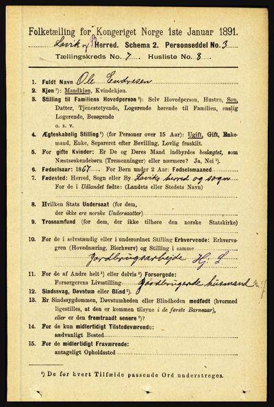 Image from object titled Folketelling 1891 - Lavik og Brekke - personsedler - side 1395
