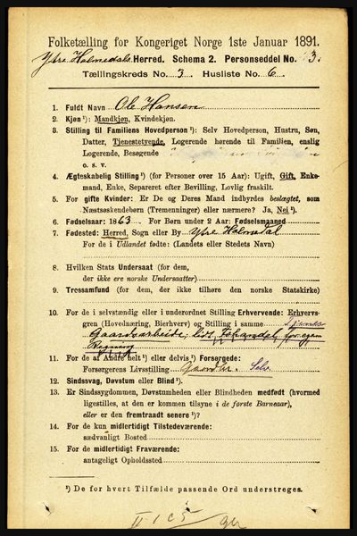 Image from object titled Folketelling 1891 - Ytre Holmedal - personsedler - side 678
