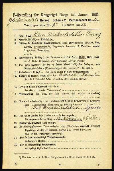 Image from object titled Folketelling 1891 - Ytre Holmedal - personsedler - side 1225