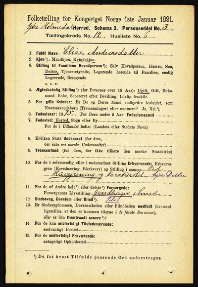 Image from object titled Folketelling 1891 - Ytre Holmedal - personsedler - side 3214
