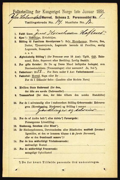 Image from object titled Folketelling 1891 - Ytre Holmedal - personsedler - side 3875