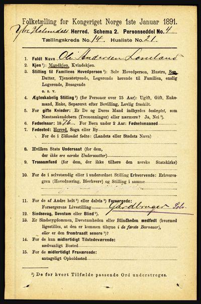 Image from object titled Folketelling 1891 - Ytre Holmedal - personsedler - side 3901