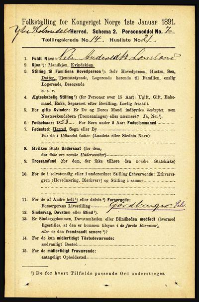 Image from object titled Folketelling 1891 - Ytre Holmedal - personsedler - side 3904