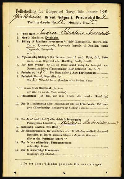 Image from object titled Folketelling 1891 - Ytre Holmedal - personsedler - side 4166