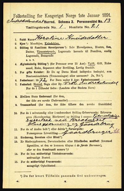 Image from object titled Folketelling 1891 - Indre Holmedal - personsedler - side 232