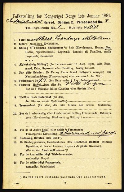 Image from object titled Folketelling 1891 - Indre Holmedal - personsedler - side 288