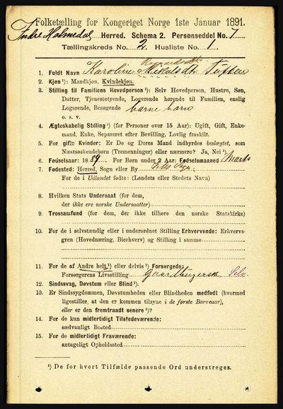 Image from object titled Folketelling 1891 - Indre Holmedal - personsedler - side 463