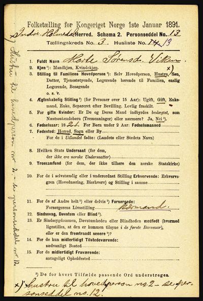 Image from object titled Folketelling 1891 - Indre Holmedal - personsedler - side 995
