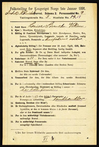 Image from object titled Folketelling 1891 - Indre Holmedal - personsedler - side 1028