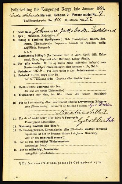 Image from object titled Folketelling 1891 - Indre Holmedal - personsedler - side 1573
