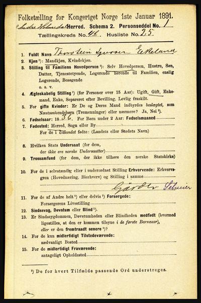 Image from object titled Folketelling 1891 - Indre Holmedal - personsedler - side 1589